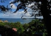 Puzzle Martinique