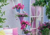 Jardin pastel