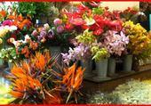 Etal de fleurs