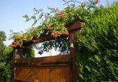 portail fleuri