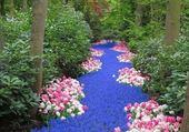 Un lit de fleurs