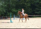 cheval de sophie