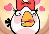 Puzzle angry bird blanc