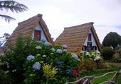 Puzzle Madère, maisons traditionnelles