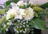 fleurs laurette