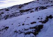 neige au pas de la case