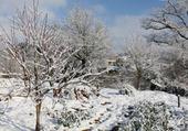 hiver tarnais