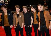 Puzzle one direction NRJ music awards 13