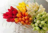 fleures rabi
