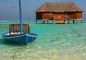 Barque