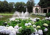 Puzzle Petite fontaine