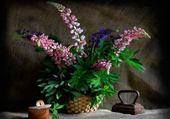 Bouquet de lupins