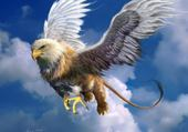 mi aigle mi lion