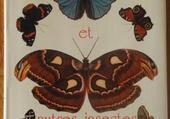 Puzzle Papillons
