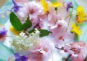 Puzzle Couleurs de printemps