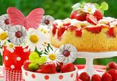 lolli-cakes