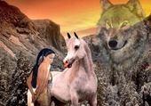 cheval et loup