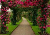 Allée fleurie