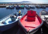 Petit port des barques