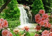 Puzzle Cascade et roses