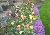 parterre fleuri