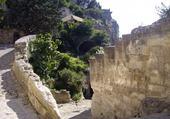 voyage en Avignon