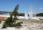 YELLOWSTONE ET SES GEYSERS