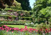 Jardin sur ile Victoria