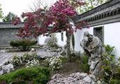 Puzzle Jardin Zen