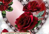 les roses de l amour