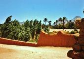 oasis de Tazrouk