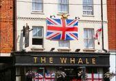 The Whale - Buckingham