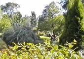 parc du Kerry