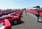 un nid Ferrari