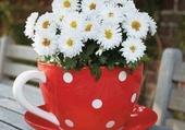 tasse fleurie