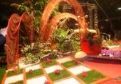 Expo de fleurs