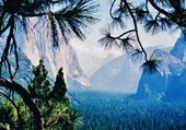 Puzzle Yosemite parc
