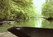Venise verte