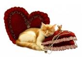 Puzzle chat qui dort