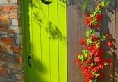 Doors - Lime Green Portal