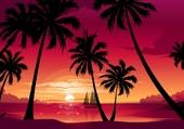 Sous les palmier