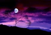Lune en beauté