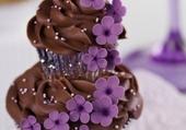 Cupcakes de choco au fleur mauve