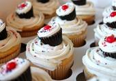 Mini cupcakes sur cupcakes