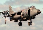 Harrier British