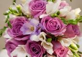 Bouquet de fleur mauve