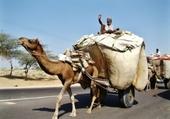 transport non polluant