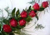 grappe de roses rouges