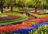 Puzzle Parc à Tokyo