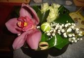 Orchidée  et compagnie